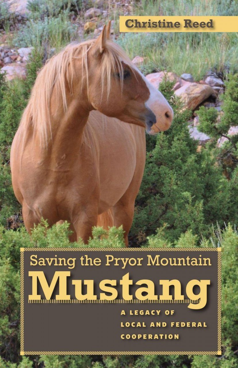 Saving The Pryor Mountain Mustang A Legacy Of Local And Federal Cooperation