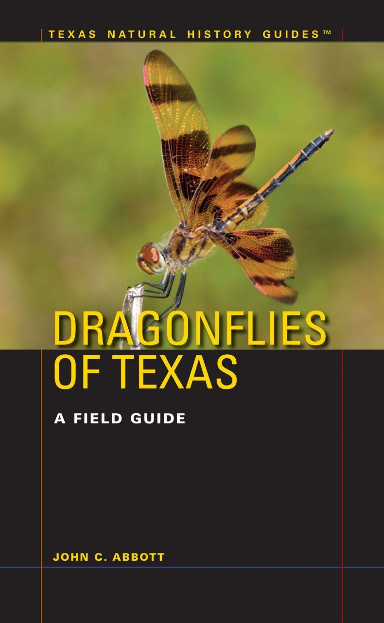 The Handbook of Texas Boating Laws and Responsibilities