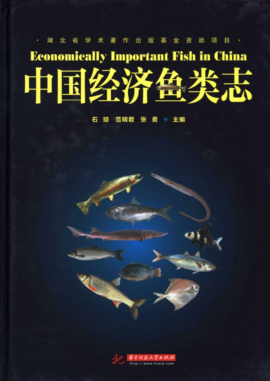 Economically Important Fish in China [Chinese]