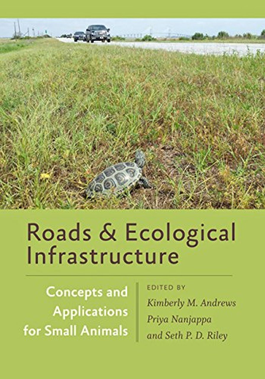Roads & Ecological Infrastructure