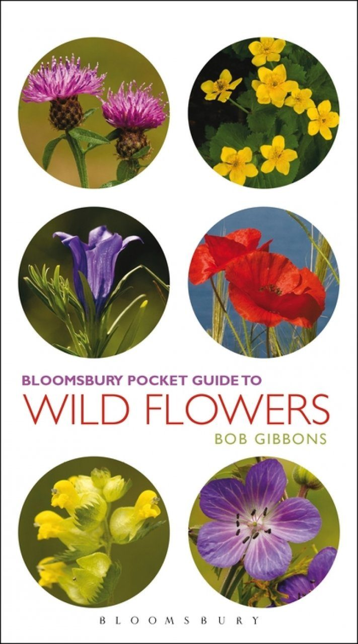 Bloomsbury Pocket Guide to Wild Flowers