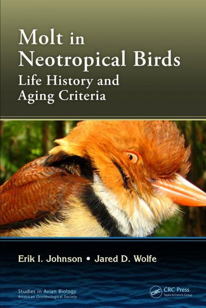 Molt in Neotropical Birds