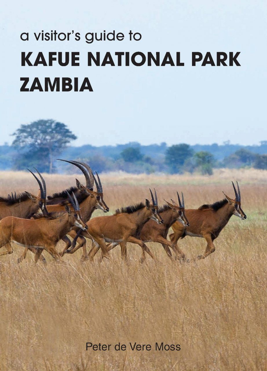A Visitor's Guide to Kafue National Park, Zambia