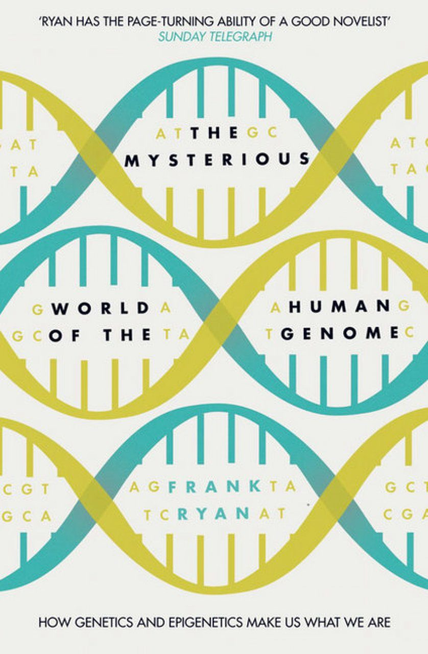 The Mysterious World of the Human Genome