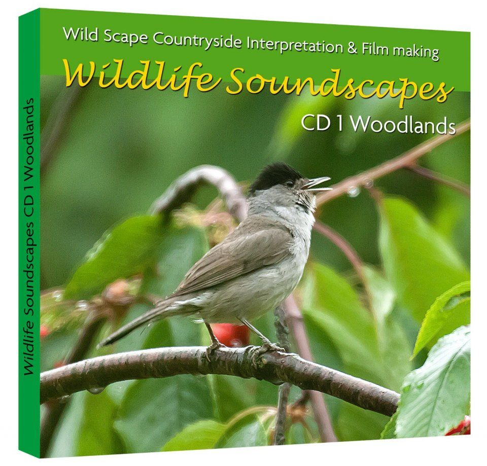Wildlife Soundscapes, CD 1: Woodlands
