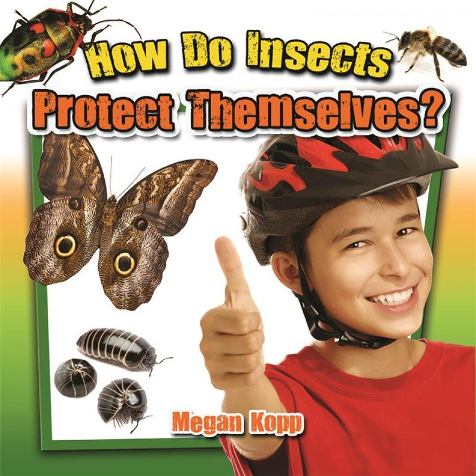 How Do Insects Protect Themselves?
