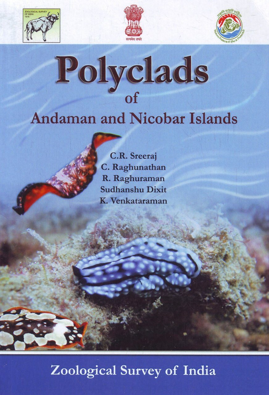 Polyclads of Andaman and Nicobar Islands