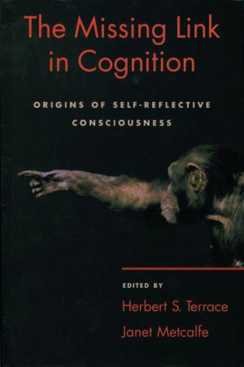 The Missing Link in Cognition