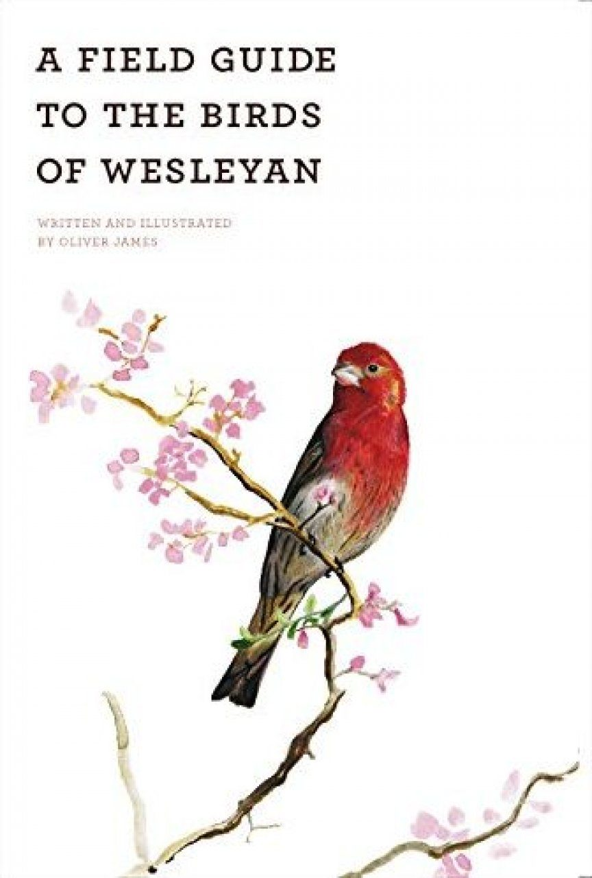 A Field Guide to the Birds of Wesleyan