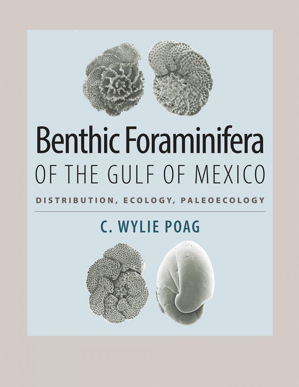 Benthic Foraminifera of the Gulf of Mexico
