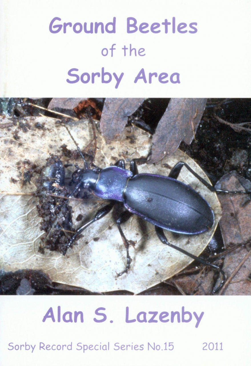 Ground Beetles of the Sorby Area