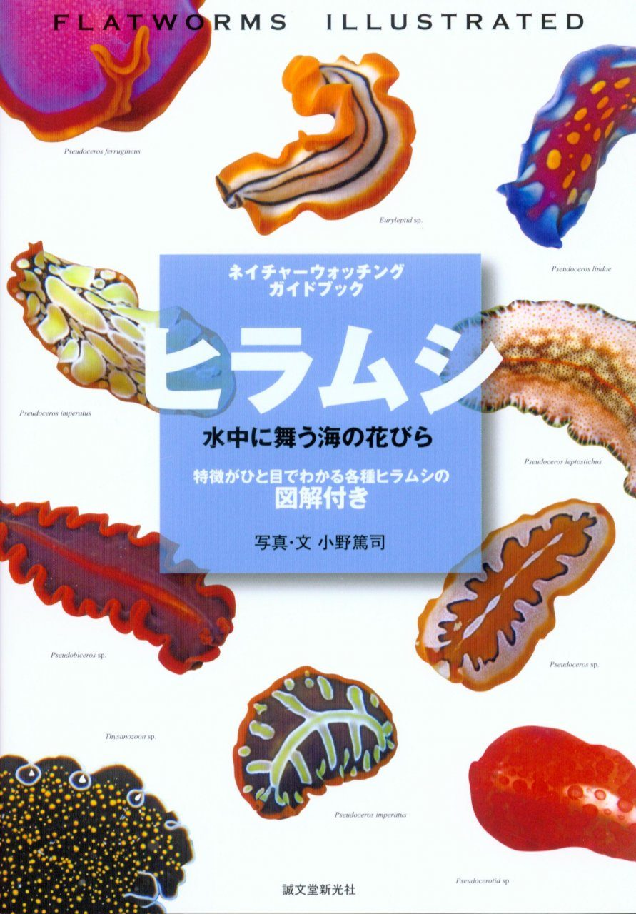 Flatworms Illustrated [Japanese]