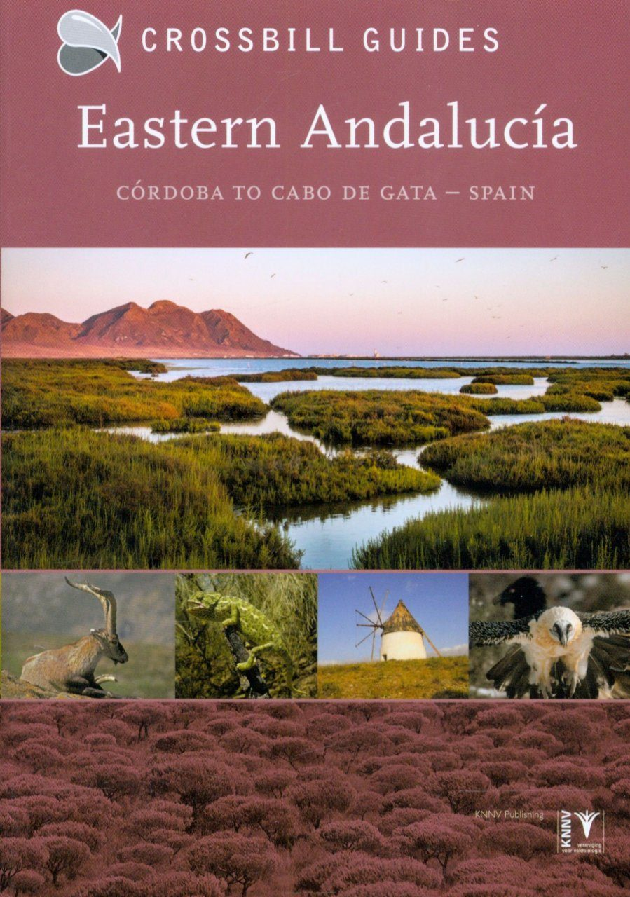 Crossbill Guide: Eastern Andalucía