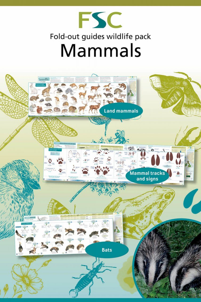 FSC Wildlife Pack 7: Mammals