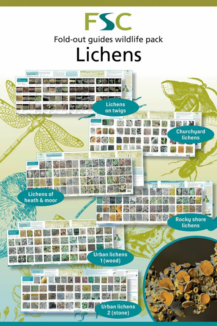 FSC Wildlife Pack 20: Lichens