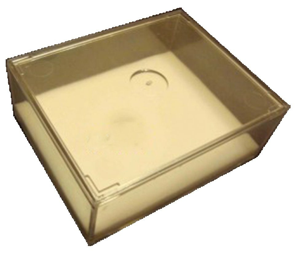 Plastic Specimen Transport Box