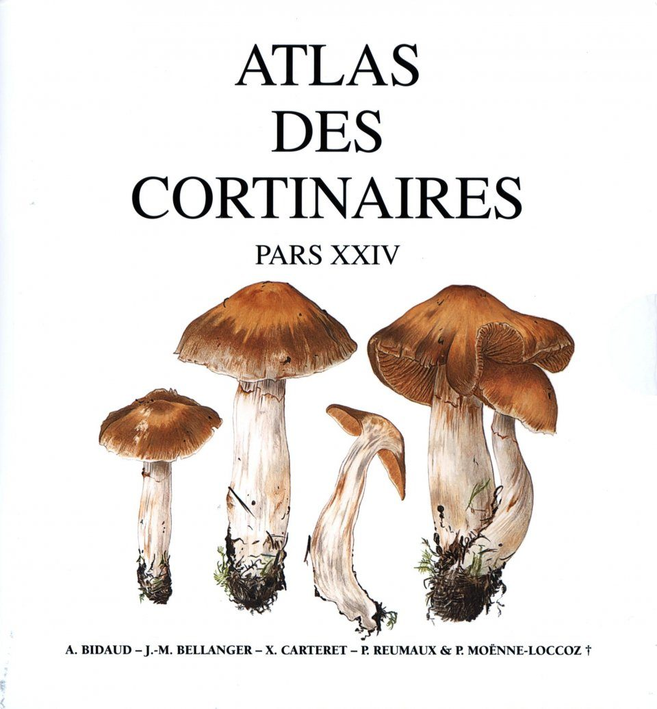 Atlas des Cortinaires, Pars 24: Sections Hydrotelamonia et Dermocybe