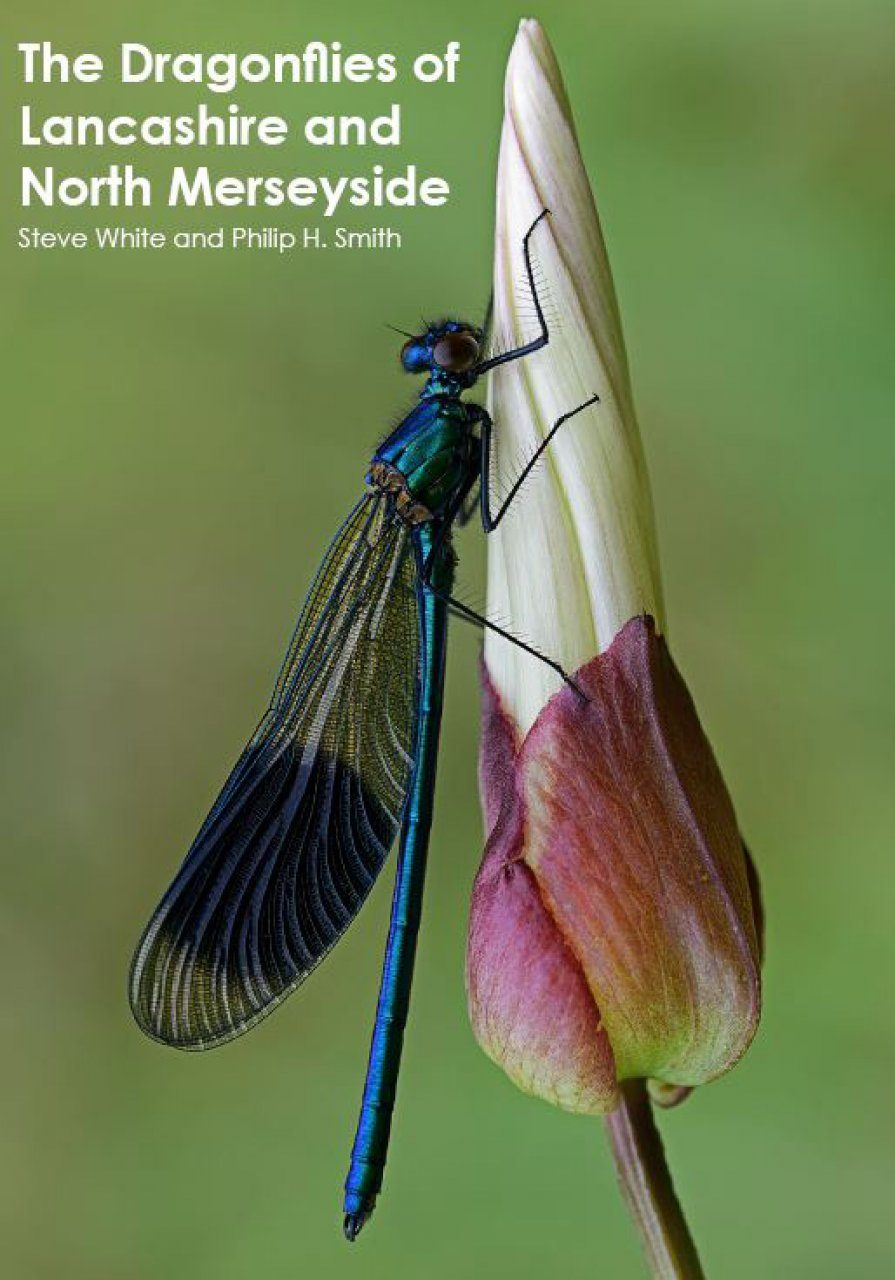 The Dragonflies of Lancashire and North Merseyside