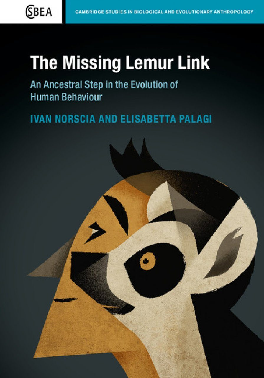 The Missing Lemur Link