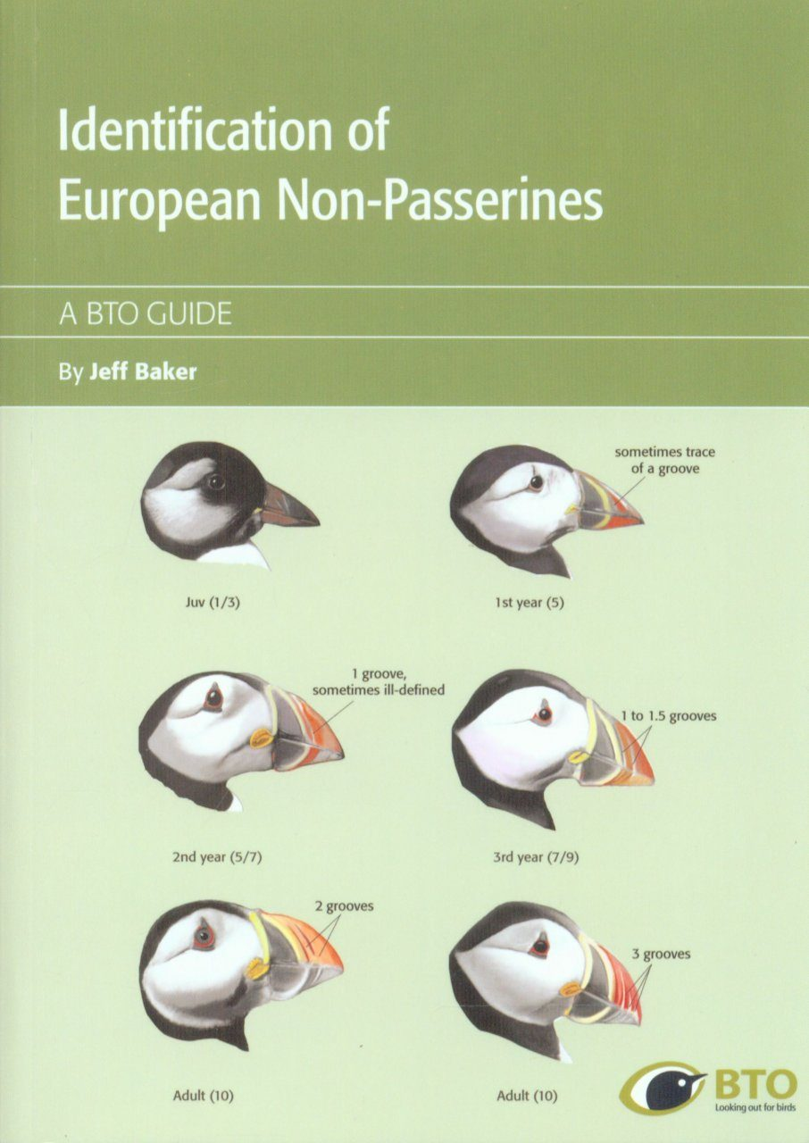 Identification of European Non-Passerines