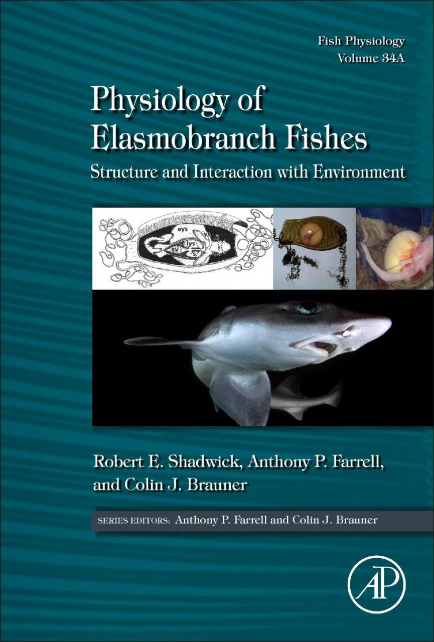 Fish Physiology, Volume 34A