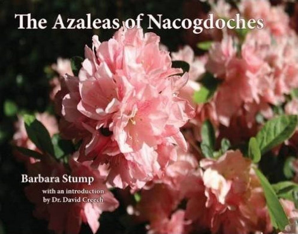 The Azaleas of Nacogdoches