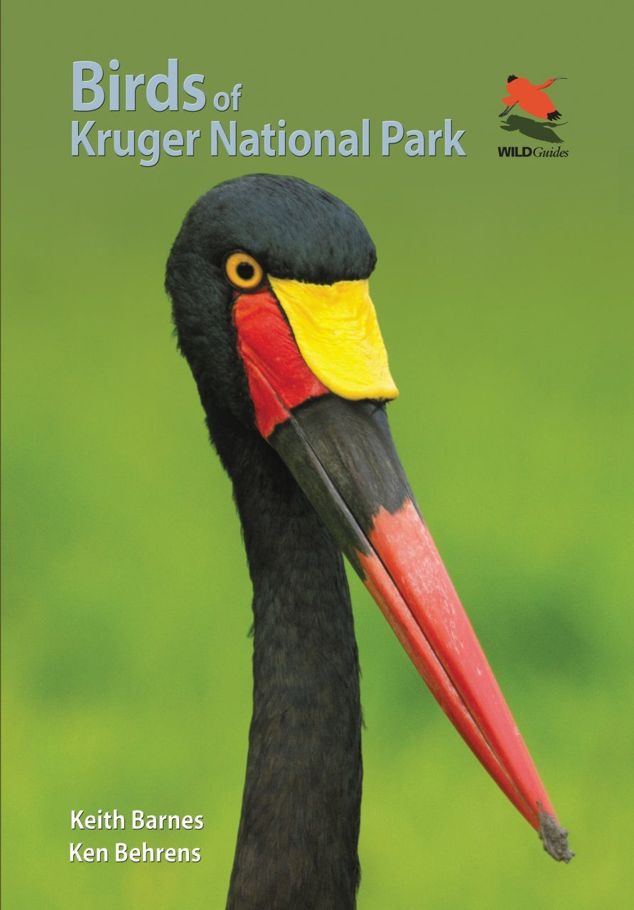 Birds of Kruger National Park