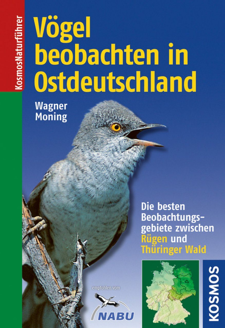 Vögel Beobachten in Ostdeutschland: Die Besten Beobachtungsgebiete Zwischen Rügen und Thüringer Wald [Watching Birds in Eastern Germany: The Best Observation Sites Between Rügen Island and the Thuringian Forest]
