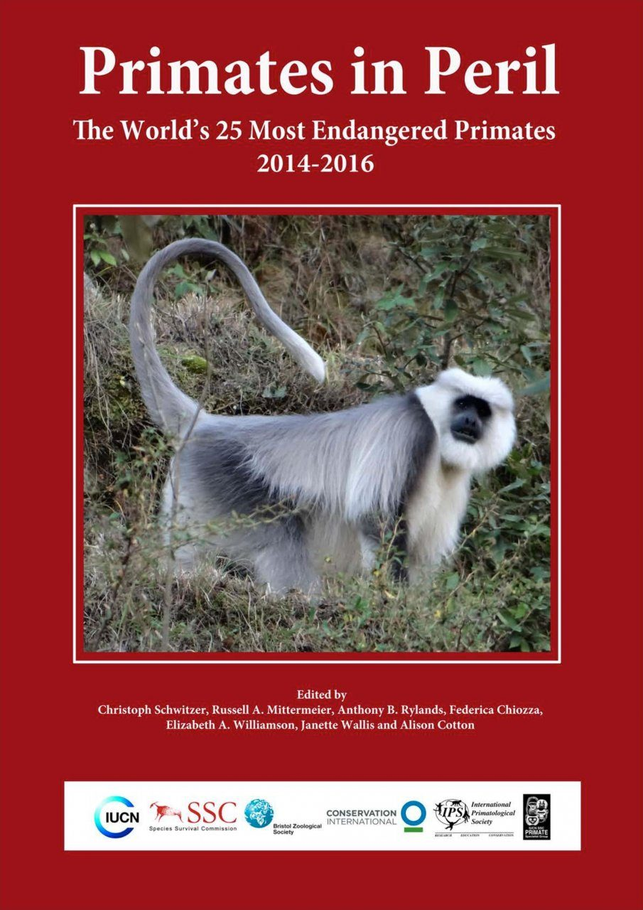 Primates in Peril: The World's 25 Most Endangered Primates 2014-2016