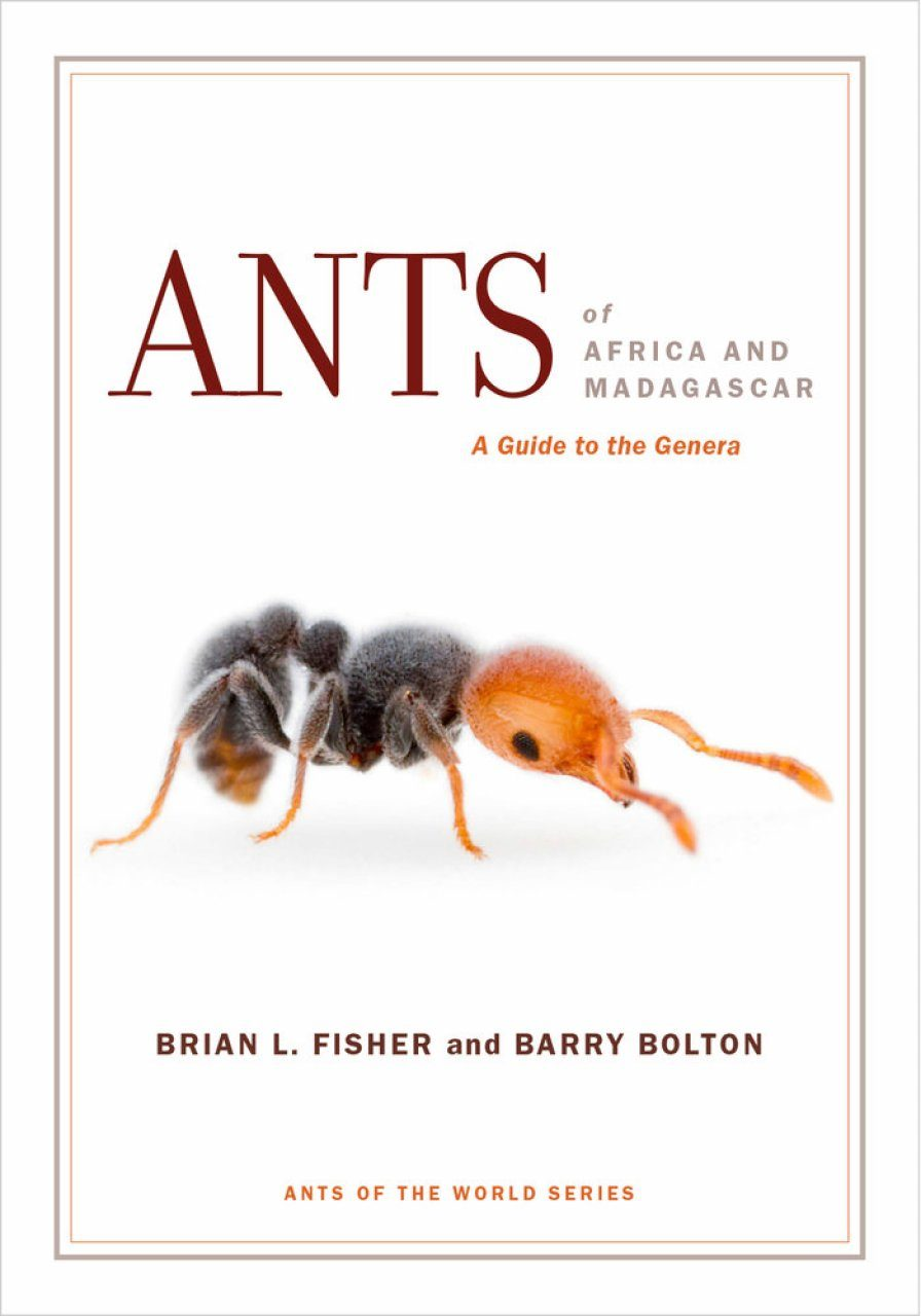 Ants of Africa and Madagascar