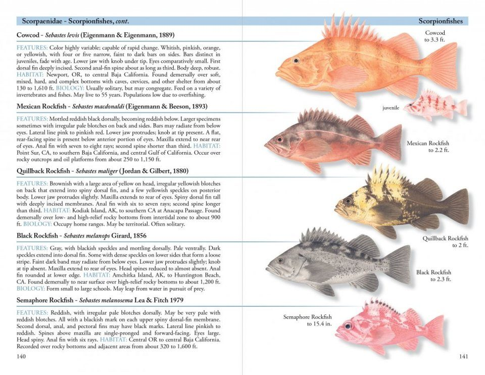 A Field Guide To Coastal Fishes From Alaska To California Nhbs