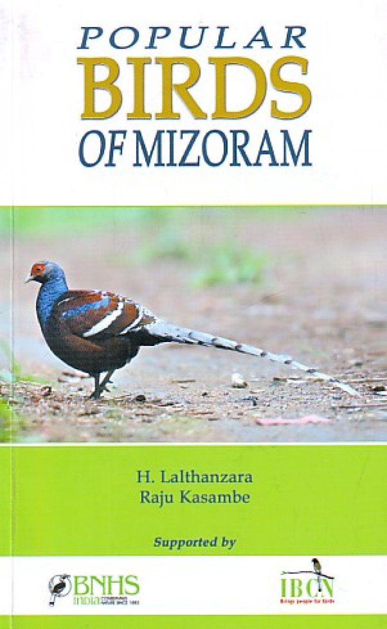 Popular Birds of Mizoram