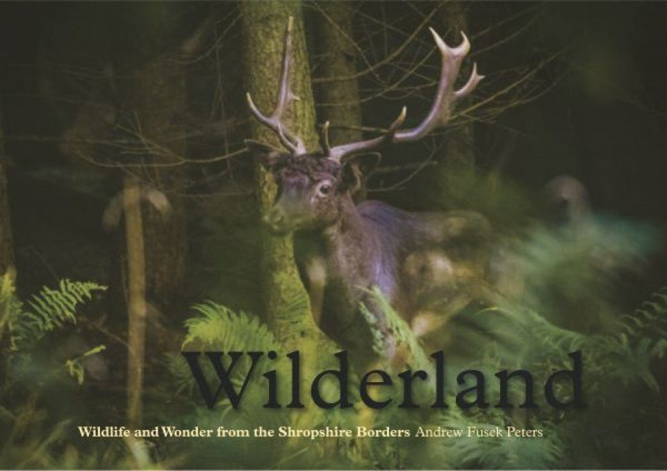 Wilderland: Wildlife and Wonder from the Shropshire Borders