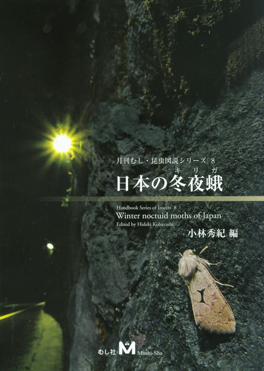 Winter Noctuid Moths of Japan [Japanese]