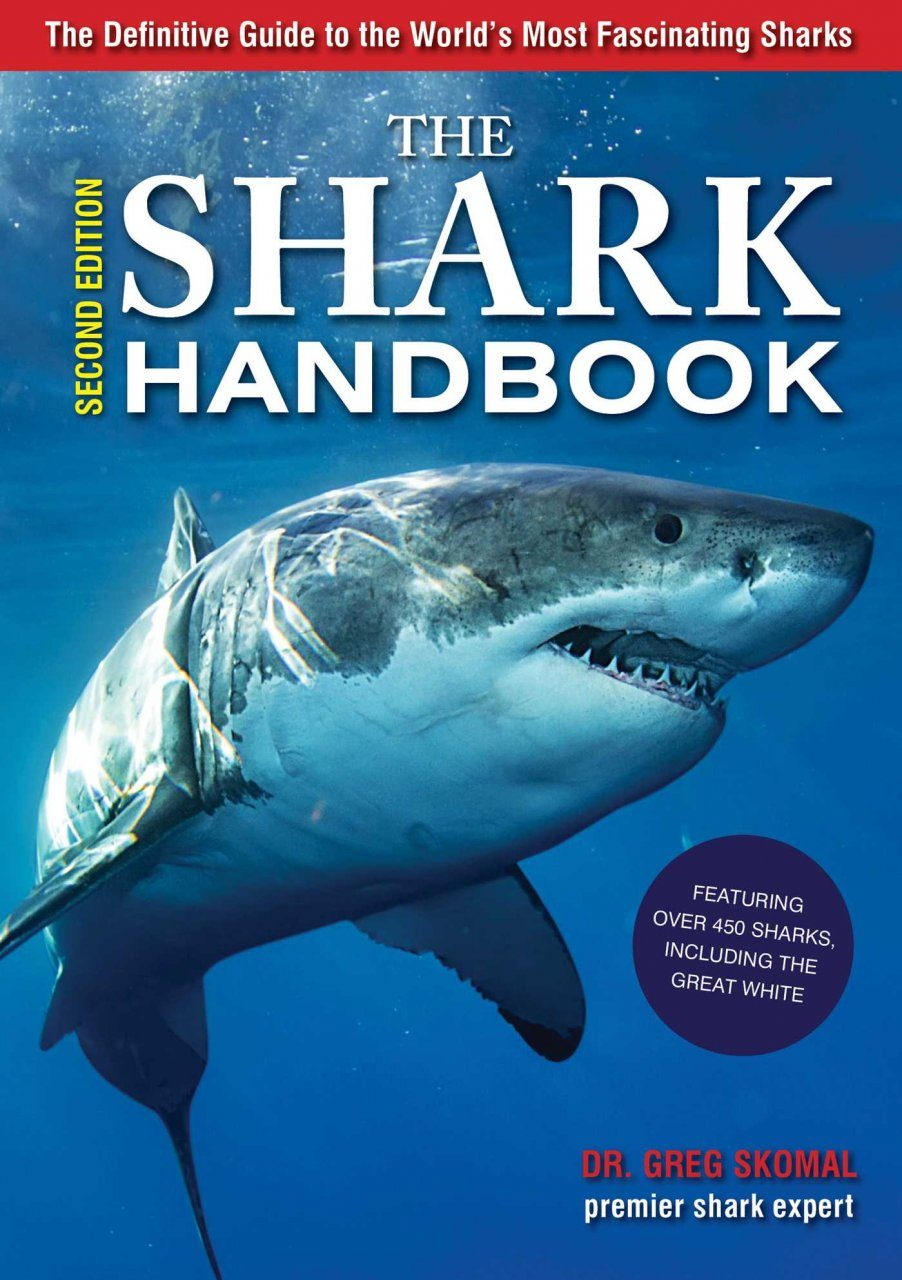Sharks Travel Guide