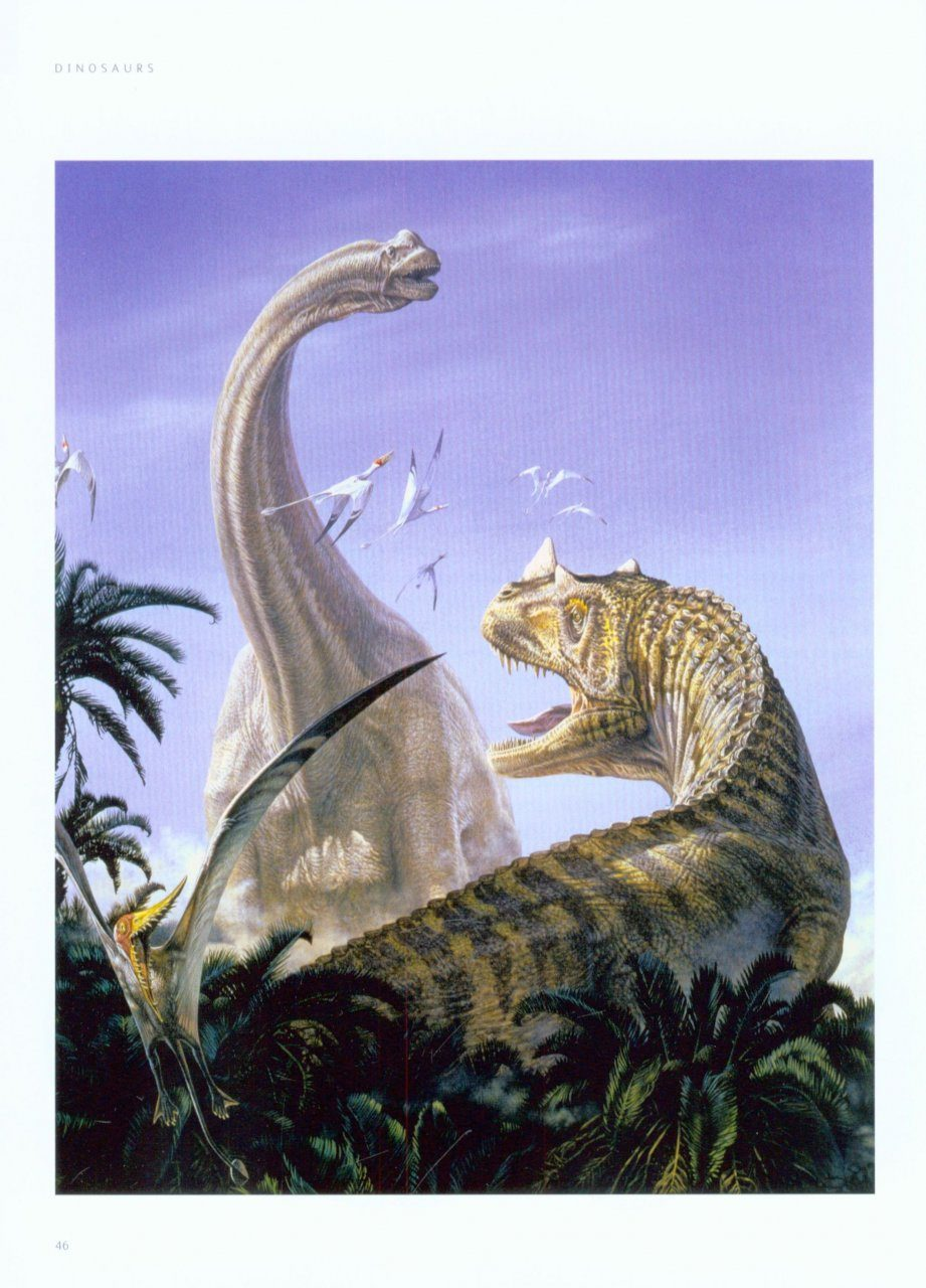 Many Important Dinosaur Groups Such As The Tyrannosaurs And Plate Backed Stegosaurs Made First Earances Birds Probably Took Wing