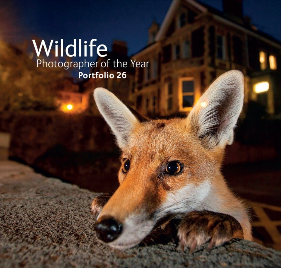 Wildlife Photographer of the Year, Portfolio 26
