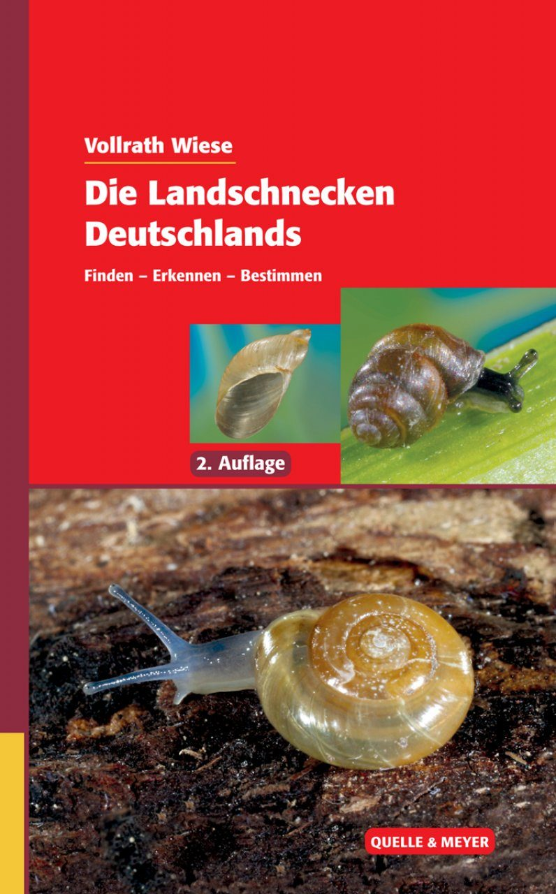 Die Landschnecken Deutschlands: Finden – Erkennen – Bestimmen [The Land Snails of Germany: Finding – Recognizing – Identifying]