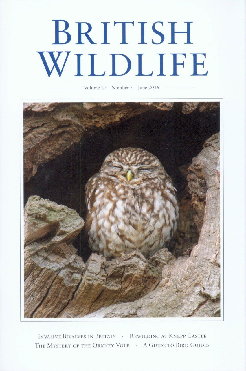 British Wildlife 27.5 June 2016