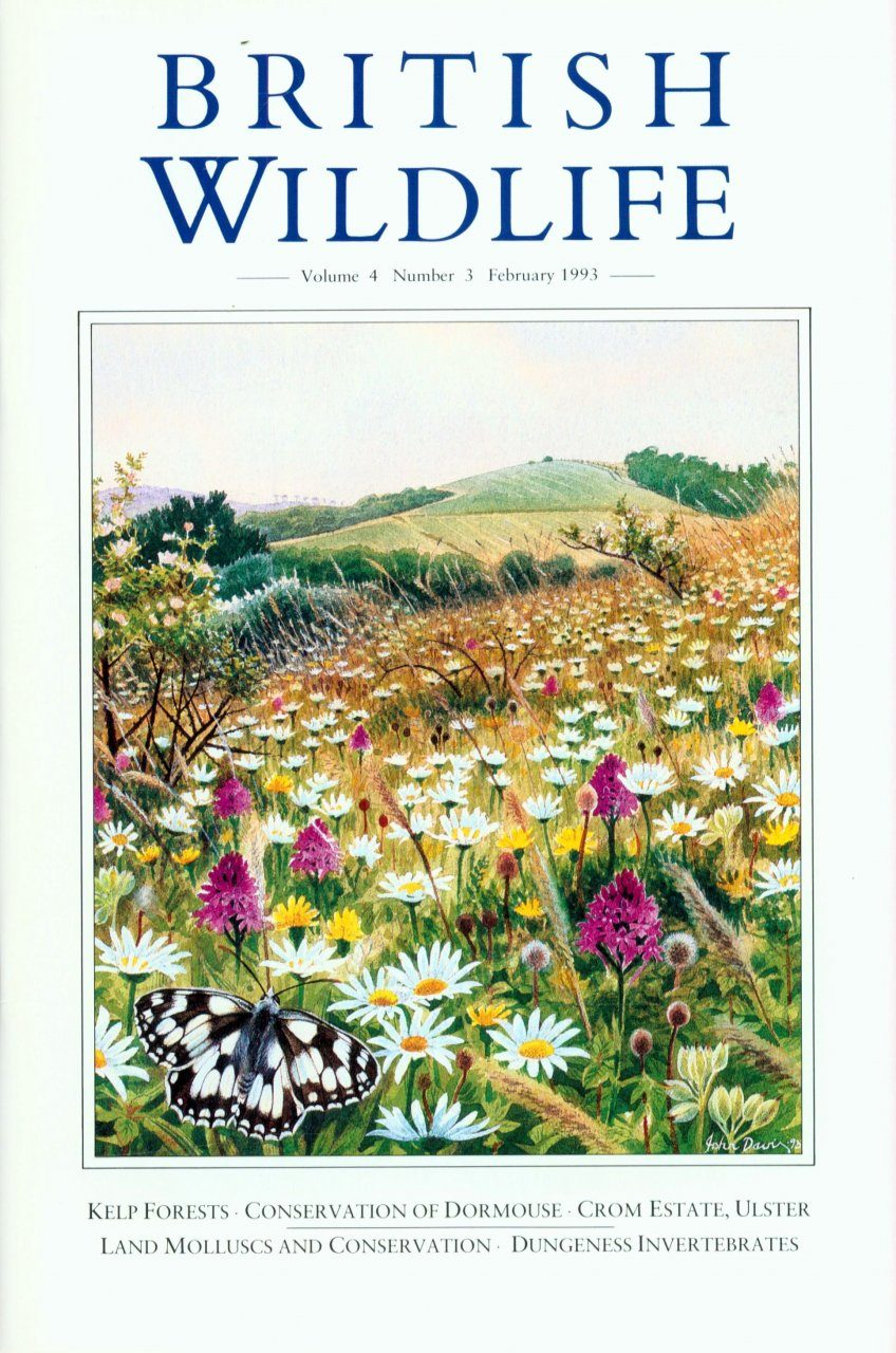 British Wildlife 04.3 February 1993