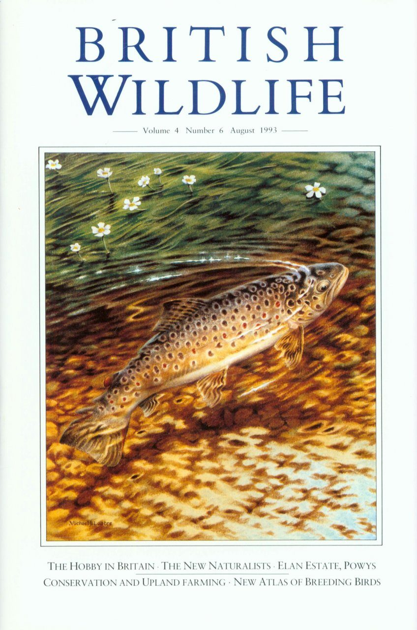 British Wildlife 04.6 August 1993