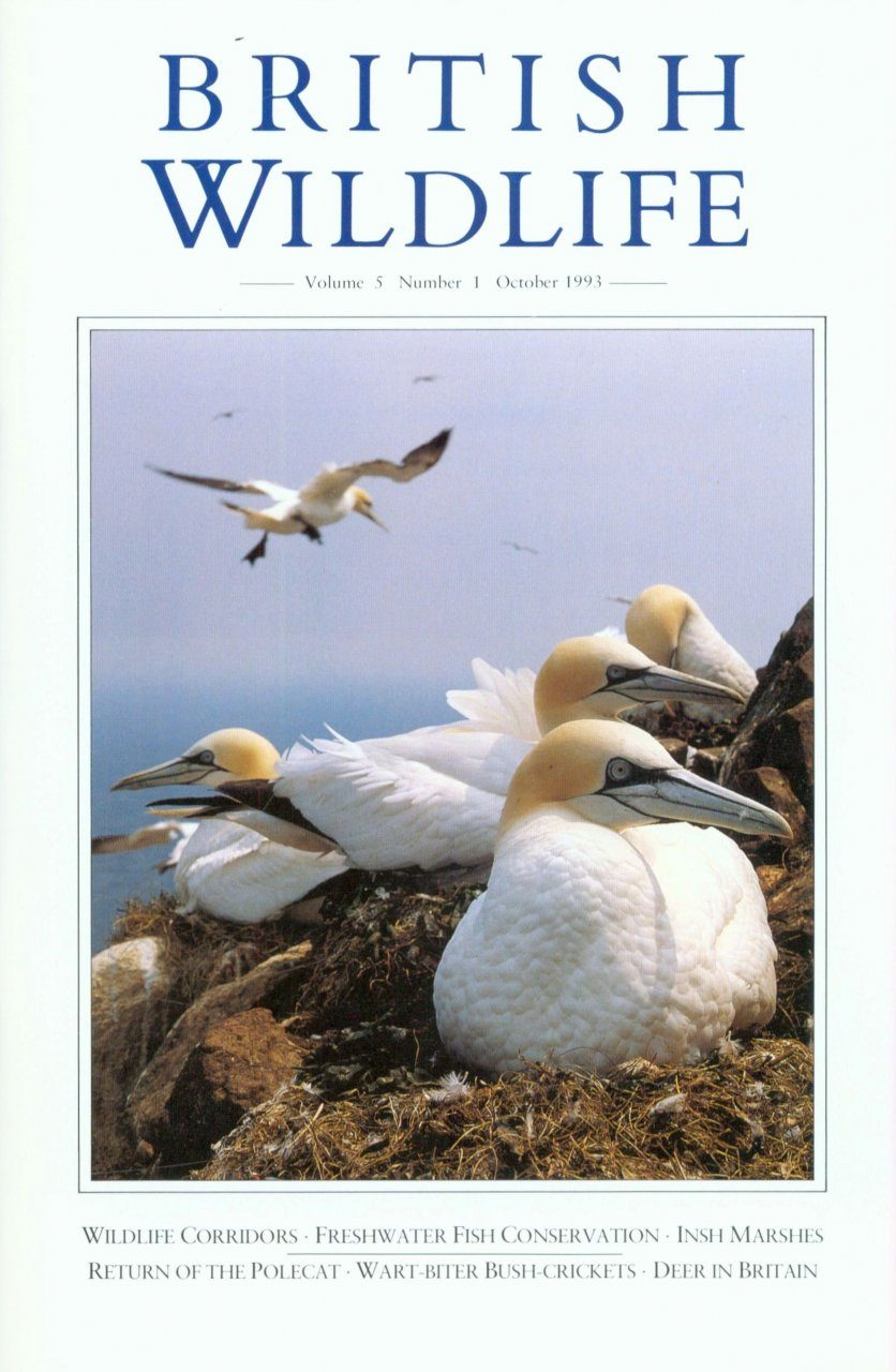 British Wildlife 05.1 October 1993