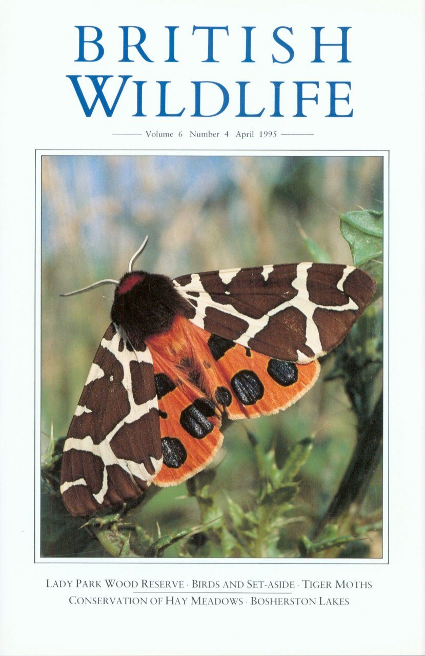 British Wildlife 06.4 April 1995