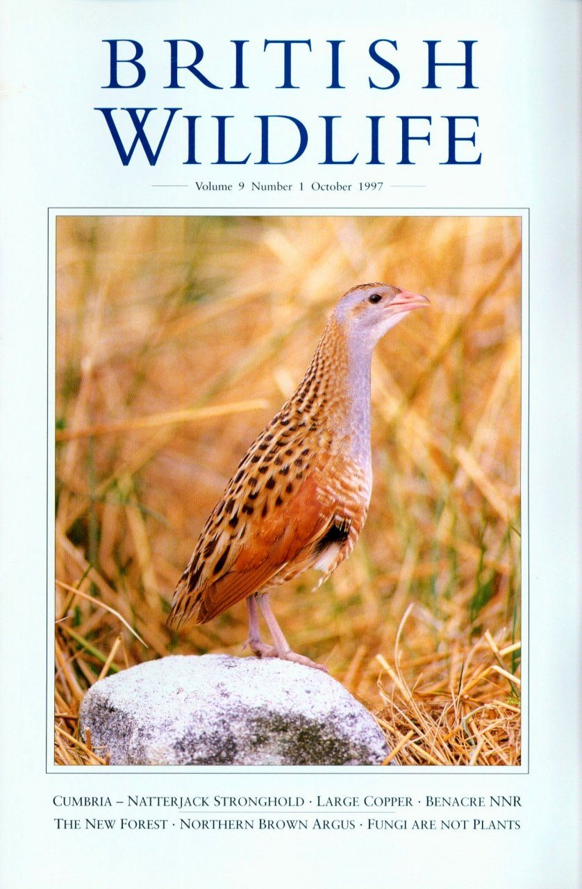 British Wildlife 09.1 October 1997