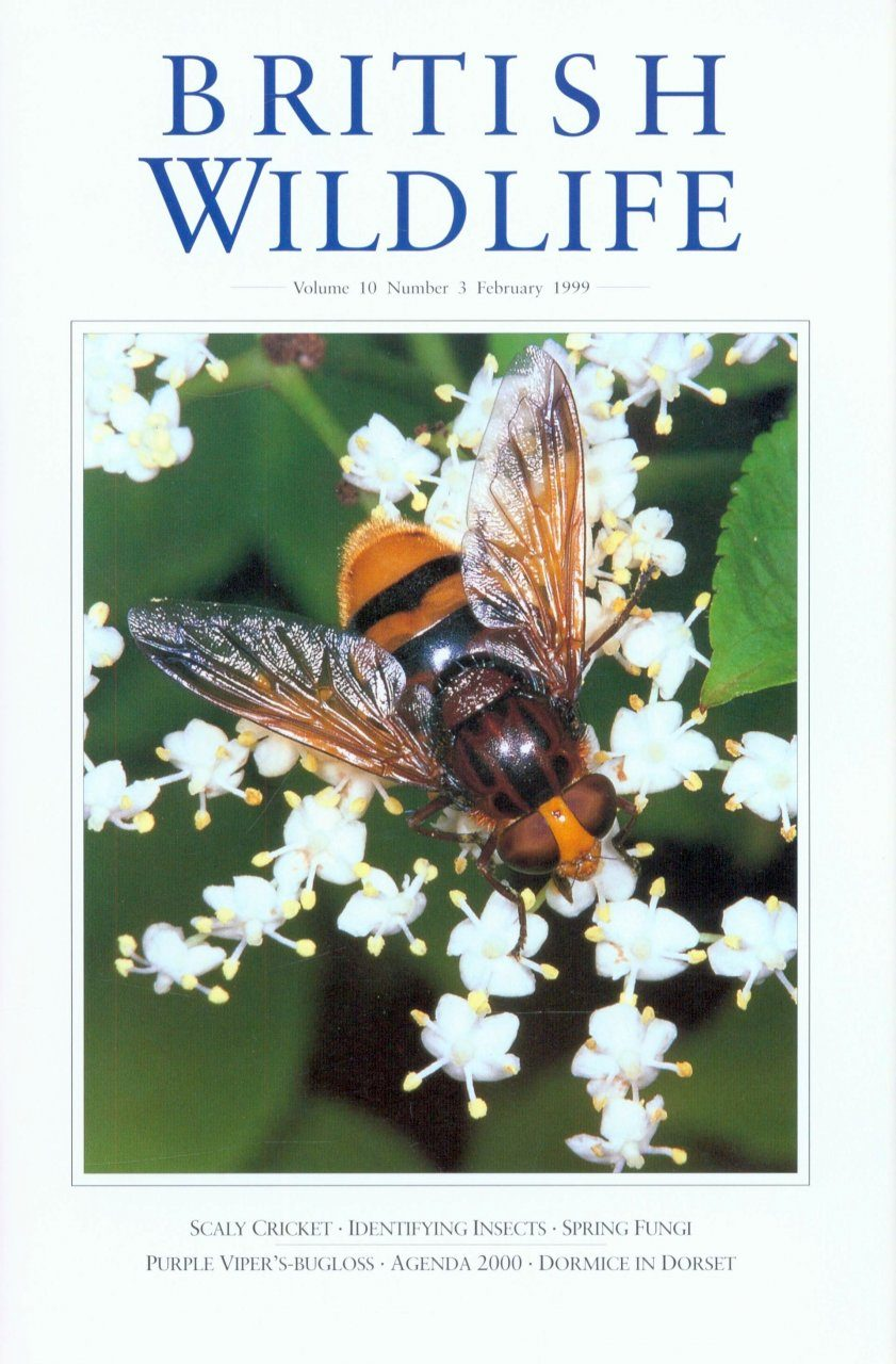 British Wildlife 10.3 February 1999