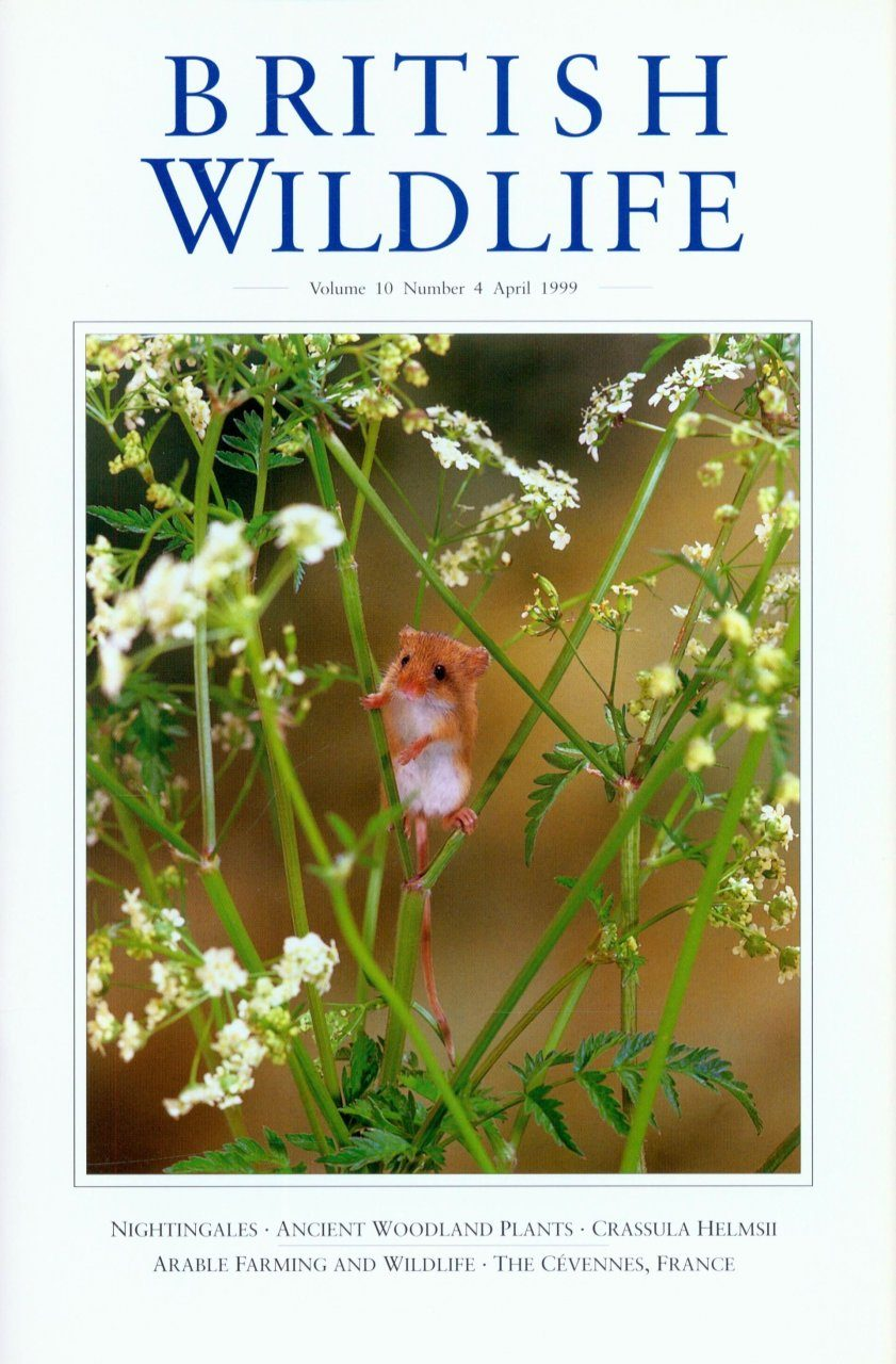 British Wildlife 10.4 April 1999