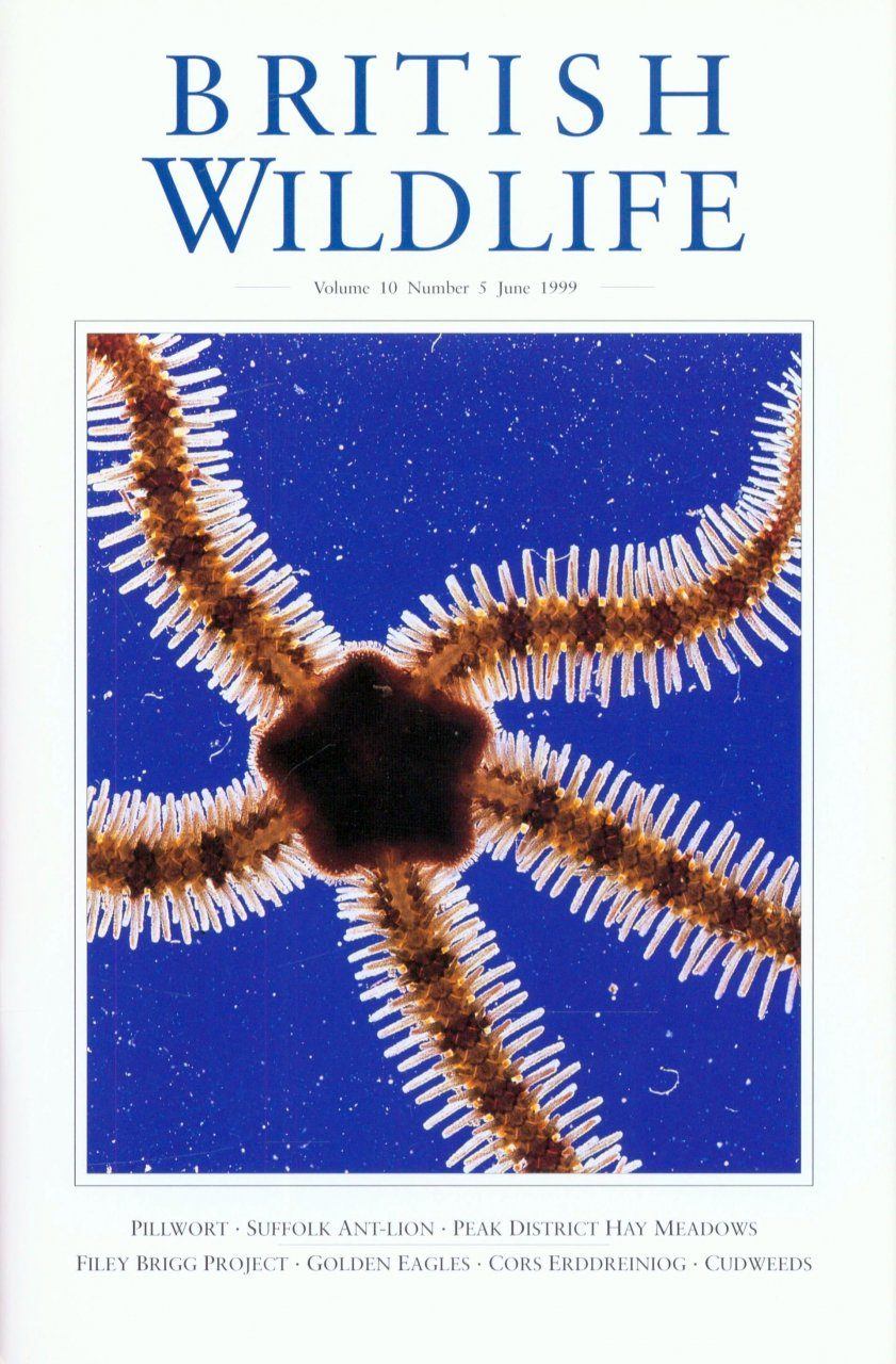 British Wildlife 10.5 June 1999