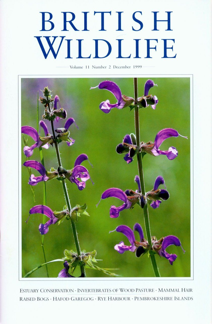 British Wildlife 11.2 December 1999