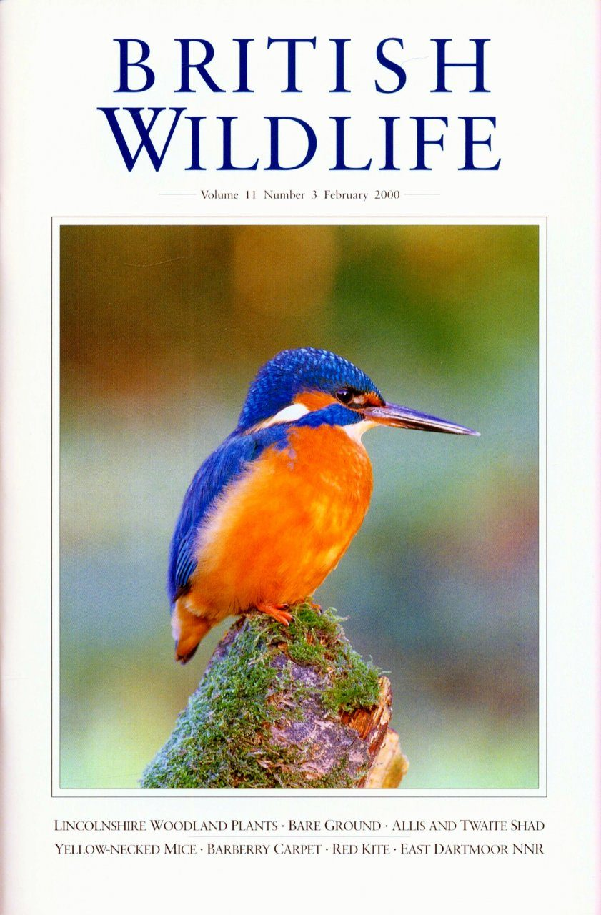 British Wildlife 11.3 February 2000