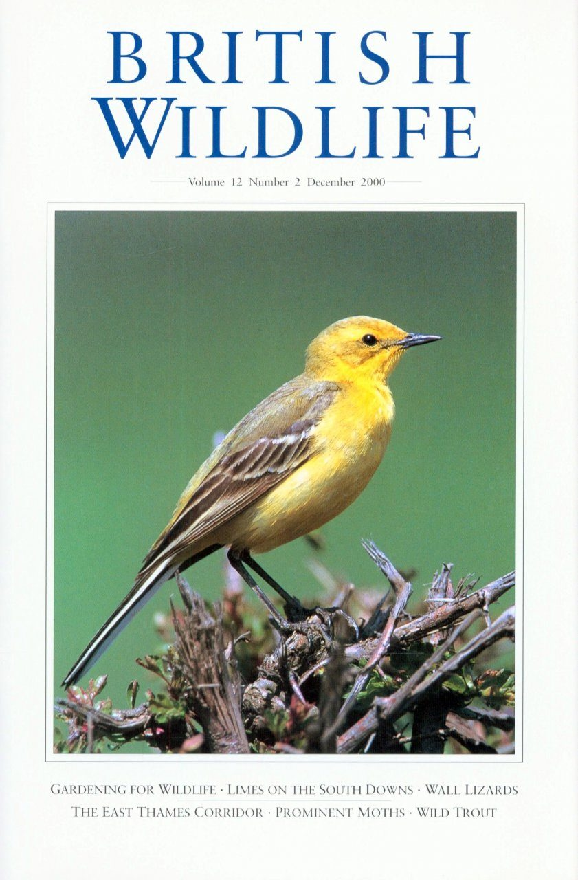 British Wildlife 12.2 December 2000
